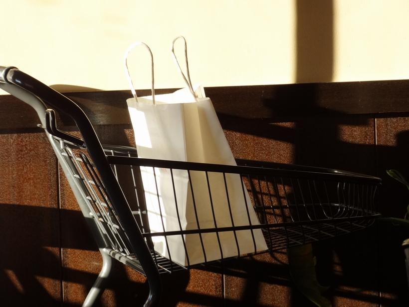 お気に入りの紙袋を選びたい|晒クラフト – 素材を考える